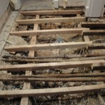 Structural Damage to Floor in Swiss Cottage